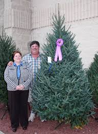 wctpa tree u0026 wreath contest convention growers meeting