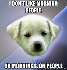 Morning People Meme - i don t like morning people or mornings or people apathy dog
