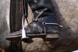 How To Clean Care For Leather Riding Boots C S