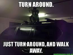 Walk Away Meme - turn around just turn around and walk away creepy koala
