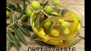Minyak Zaitun Untuk Rambut Di Alfamart 0821 3728 1516 t sel harga minyak zaitun di alfamart