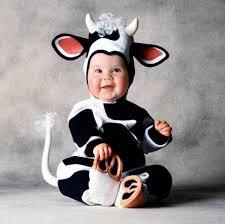 Cutest Infant Halloween Costumes Cutest Infant Halloween Costumes Baby Animal Suits Jpg 600 599