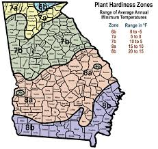 Gardening Zone By Zip Code - selecting and growing azaleas uga cooperative extension