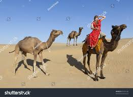 thar desert animals young woman saree thar desert her stock photo 99757190 shutterstock
