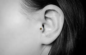 mens tragus tragus piercings bud jewellery cartilage piercing information uk