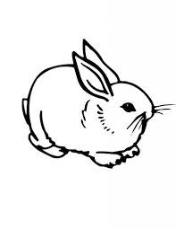 baby rabbit coloring pages aecost net aecost net
