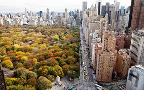 halloween attractions in new york city america u0027s best cities for fall travel travel leisure