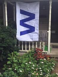 Cubs Flag Illinois Woman Gets Fined For Flying The Cubs U0027w U0027 Sign