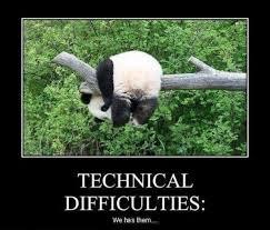 Panda Meme - im a sad panda meme guy