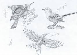 mockingbird jabberjay u003d mockingjay by sharny93 on deviantart