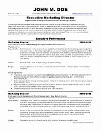 Resume Format Sales And Marketing Marketing Job Resume Examples Professional Areas Of Expertise Of
