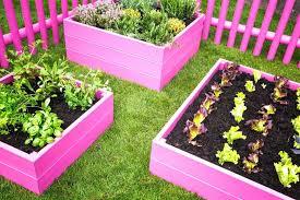 beautiful raised bed garden smartwedding co