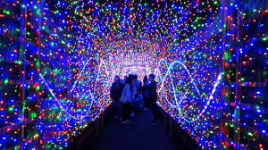 zoo lights houston prices family friendly events in los angeles for new year s eve 2017 axs