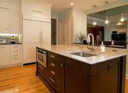 Door Cabinet Kitchen Garage Door Cabinets Fpudining