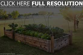 raised gardens diy home outdoor decoration
