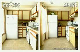 kitchen cabinet design ideas amazing kitchen cabinet liners pic cabinets design ideas