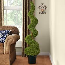 astoria grand cedar spiral tree with in green pot reviews