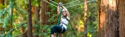 Sonoma Canopy by Mount Hermon Mount Hermon Adventures Adventures