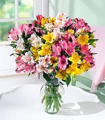 alstroemeria flower amazing alstroemeria flower petal send flowers online same