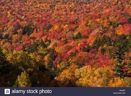 hampshire autumn mount washington mount washington auto