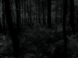 scary halloween background videos scary free video clips 800 600 creepy forest backgrounds 35