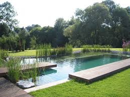Backyard Swimming Ponds by Best 25 Swimming Pool Construction Ideas On Pinterest Swimming