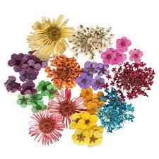 dried flowers endless summer and preserve your flowers palace florists