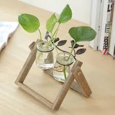 online shop hydroponic plants planter container terrarium garden