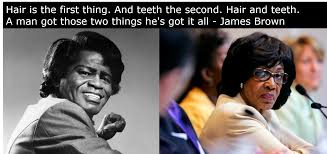 James Brown Meme - i mean come on who can t see the similarities between maxine