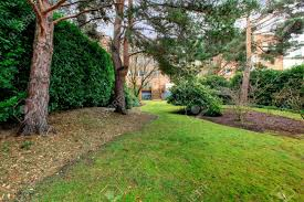 backyard of large brick apartment building with pine trees and