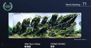 Japanese Aquascape by Wonderful Layout From Wai Sun Chow Also Know As Dave Chow Rank