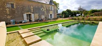 swimming pond free chemical swimming pool home decor and design