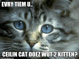 What Font Is Used For Memes - what font is used for the lolcats pics archive dvd talk forum