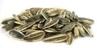 14 great benefits of sunflower seeds no 1 unbelievable dr heben