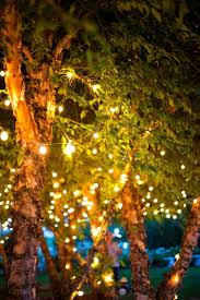 best lights in trees ideas on log base torch
