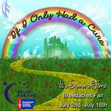 wizard of oz relay for life theme google search sheldons relay