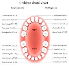 Comfort Dental Greeley Dental Topics Pediatric Dentist In Greeley Co