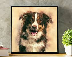 australian shepherd los angeles rescue australian shepherd print canvas portrait artwork custom dog