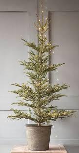 best 25 real trees ideas on tree