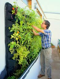 florafelt vertical garden planters make living walls easy