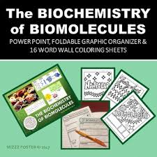 the biochemistry of biomolecules powerpoint foldable and 16 word