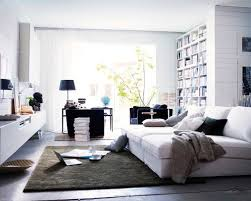 Ikea Living Room Houzz - Ikea design ideas living room
