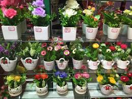 potted flowers cheap potted flowers wholesale yiwu china