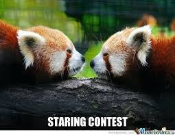 Panda Mascara Meme - quotes about pandas also awesome panda quotes panda with and