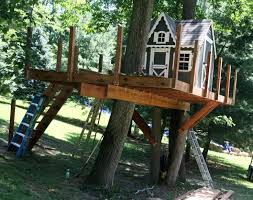 Simple Backyard Tree Houses by 52 Best Treehouse Ideas Images On Pinterest Treehouse Ideas Diy