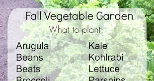 Fall Vegetable Garden Ideas by The Backroad Life Fall Vegetable Garden When To And What To Plant
