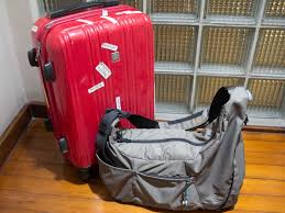 airasia liquid what can i hand carry on board my flight economy traveller