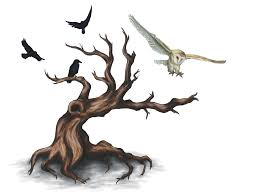 owl and tree by aw landscapes on deviantart