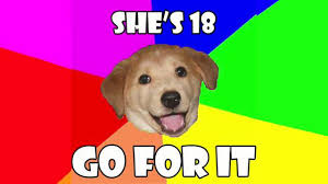 Advice Dog Memes - know your meme advice dog on vimeo