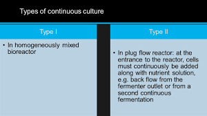 production system fermentation processes types and stages of